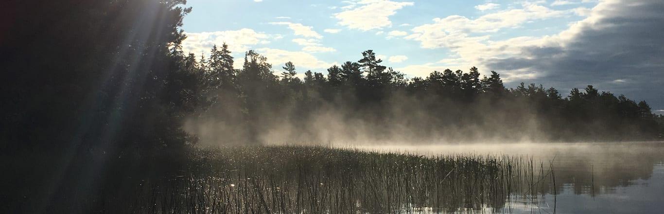 Morning mist on the lake.